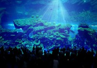 Dubai Mall Aquarium - Simulated Sunshine through Tank
